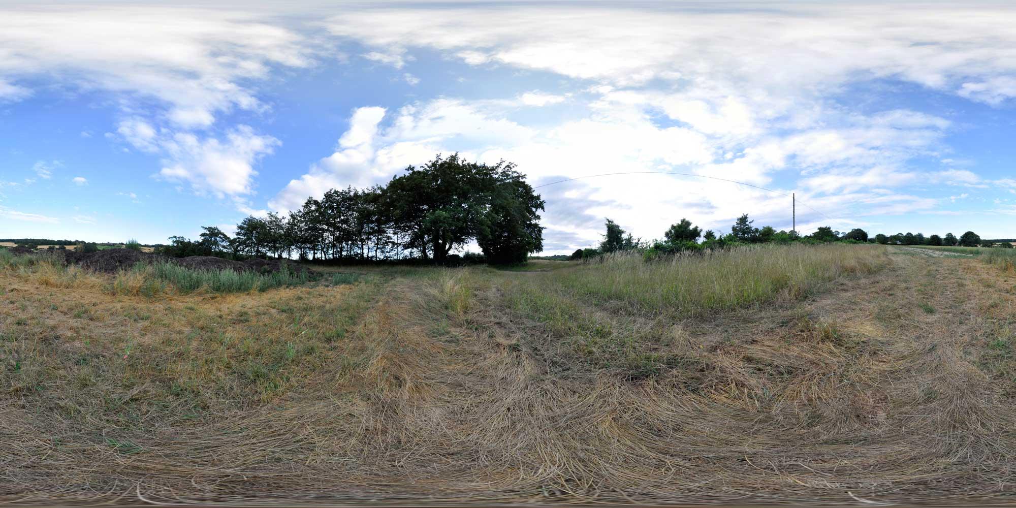crossroadsfield2